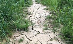 Water en droogte